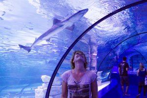 Antalya-Aquarium