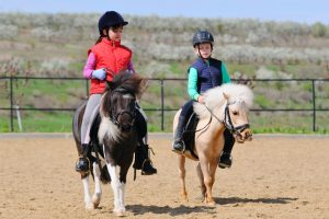 horse-riding_3